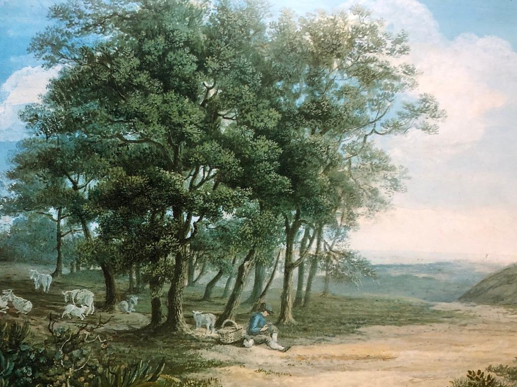 M. Dionigi, Paesaggio